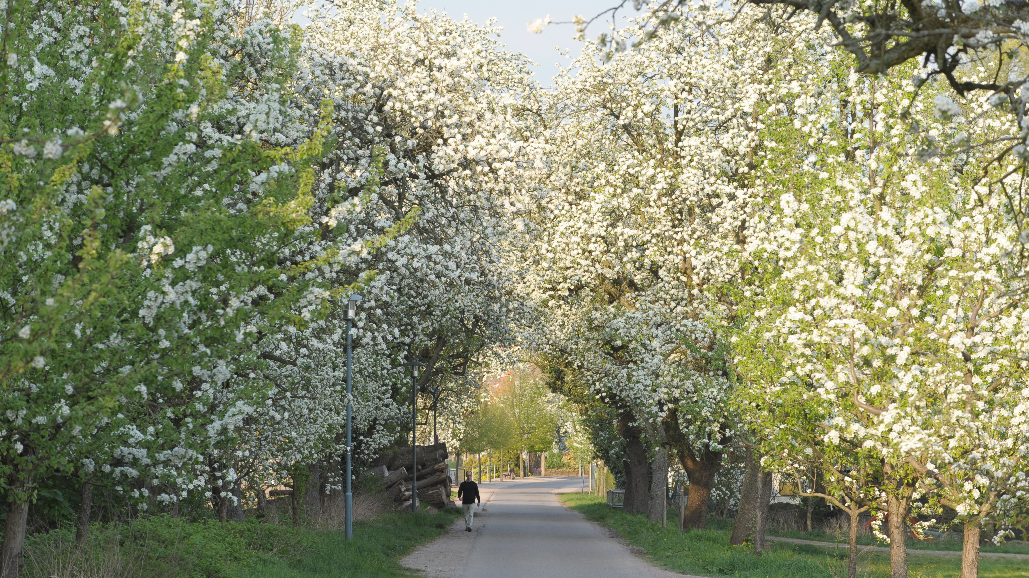 Umwelt Natur Oberhausen Rheinhausen